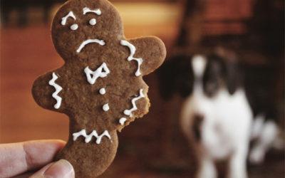 4 ways to avoid holiday season stress